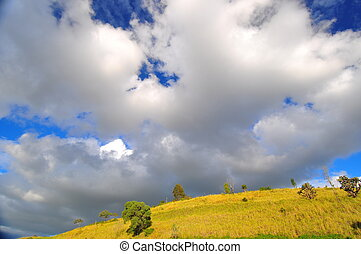 fluffy clouds over hill - grassy hill with trees and fluffy...