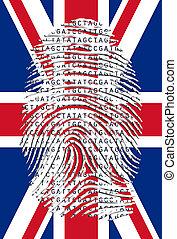 Genetic Letters in fingerprint over UK Flag