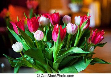 Tulips interior