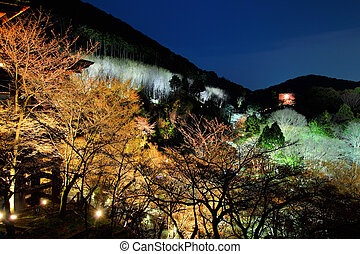 Japanese temple at night