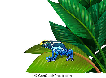 A frog above the green leaf - Illustration of a frog above...