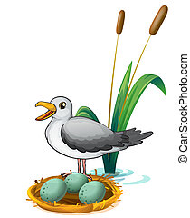 A bird beside the nest with eggs - Illustration of a bird...