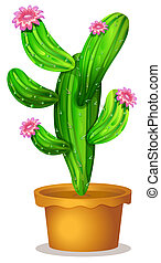 A cactus plant with pink flowers - Illustration of a cactus...
