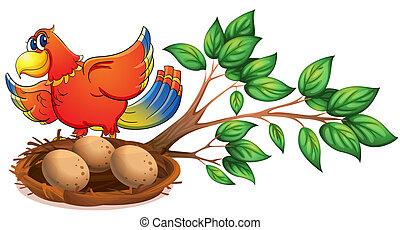 A colourful bird at the branch of a tree with a nest -...