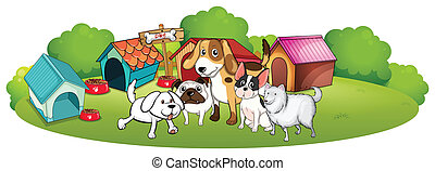 A group of dogs gathering in front of their house