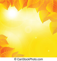 Autumn leaves on a sunny sky background