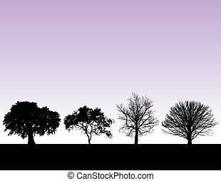 Four trees at sunset