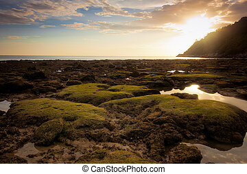 Sunset at tropical beach with rocks and stones - Ocean...