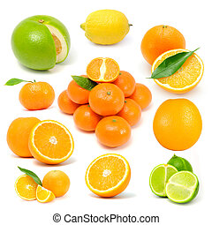 Citrus Fruit Set Grapefruit, Lemon, Orange, Tangerine, Lime...