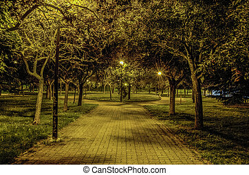 Night in the park - Night scene inside the park at Pamplona...