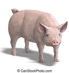 pig render - rendering of a pig with shadow and clipping...