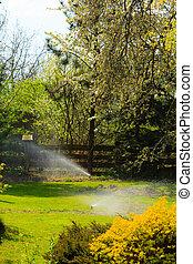 Gardening. Lawn sprinkler spraying water over grass.