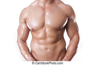body builder - Muscular male torso isolated on white