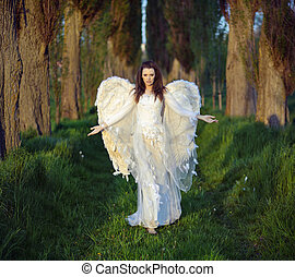 Maravilloso, bosque,  woman-angel