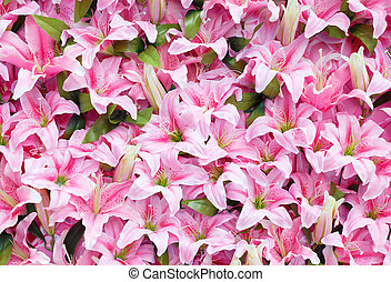 Artificial pink rain lily flowers background - Artificial...
