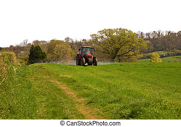 Crop spraying - a red new tractor spraying a field of young...