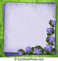 Periwinkle flowers corner - Periwinkle flowers in a corner...