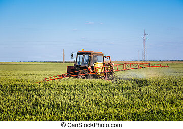 Tractor spraying wheat field with s