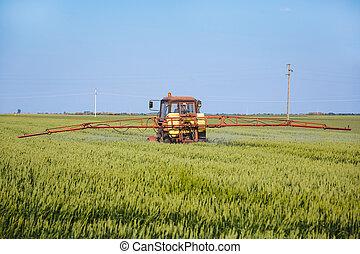 tractor, Rociar, trigo, campo, S