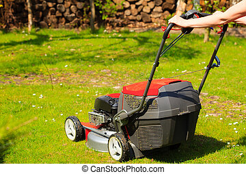 Gardening Mowing green lawn with red lawnmower in spring day...
