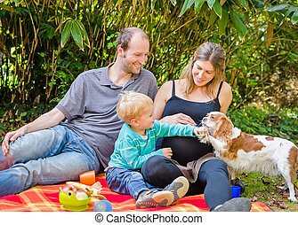 Happy family with their pregnant mother having picnic in...