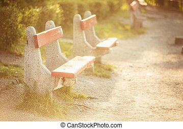 Bench at the park with footpath closeup