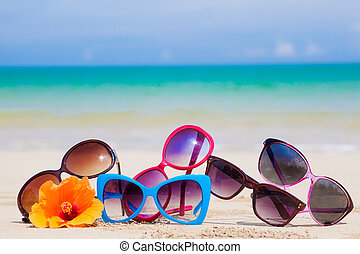 many sunglasses lying on tropical lying beach