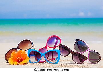 tropicais, muitos, praia, óculos de sol, mentindo