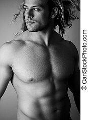sexy torso  -  black and white male sexy torso