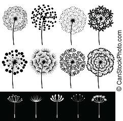 Dandelions set vector - Beautiful dandelions set vector