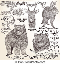 Vector set of vintage elements - Collection of high detailed...