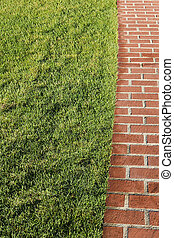 Garden lawn with a track of red brick.