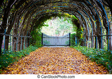 Foxglove Spires Path - A walking path in Tilba Tilba on an...