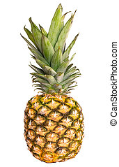 pineapple ananas fruit isolated on
