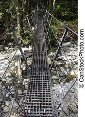 Foot bridge above Capilano River, British Columbia, Canada