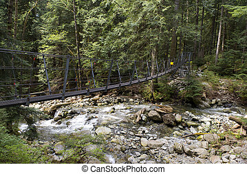 Foot bridge above Capilano River