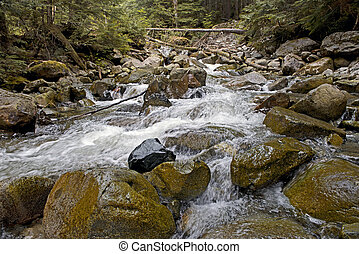 River in forest - River 'Mensi Vltavice' runs over boulders...
