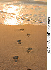 Footprints on beach sand leading to water