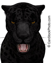 Black roaring jaguar isolated on white. - A black jaguar...