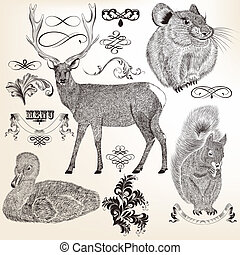 Collection of vector  animals
