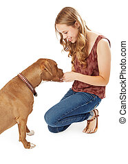 Young Woman Giving Pit Pull A Treat - A pretty young lady...