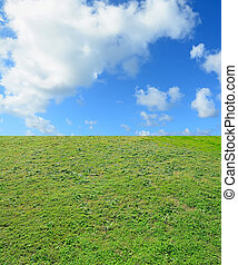sky and grass - cloudy sky over a green meadow