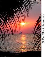 Cozumel Sunset - Sun sets over ocean in Cozumel, Mexico....