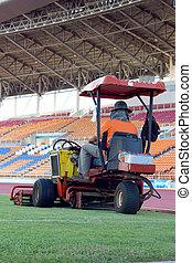 Mowers in the stadium