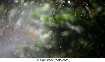 splashes on bokeh background plants. 1920-1080