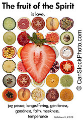 Fruits and vegetables - Cut in half of fruits and vegetables...