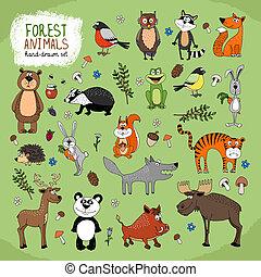 floresta, animais, hand-drawn, Ilustração