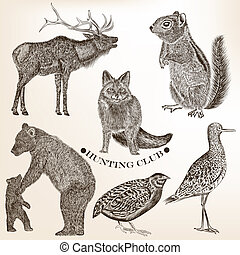 Collection of hand drawn vector animals in vintage style -...