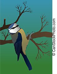 Blue tit - An illustration of a blue tit hanging on a branch