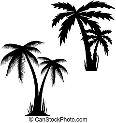 Vector illustration of palm trees vector